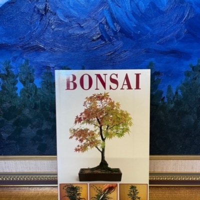 BONSAI: A STEP BY STEP GUIDE- BOOK