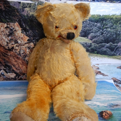 AMAZING !!!very very old teddy bear needs and good home and repair very collectible
