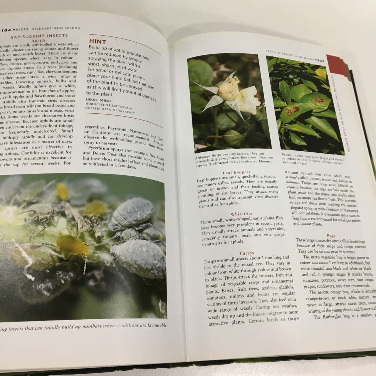 Yates Garden Guide 42nd Edition