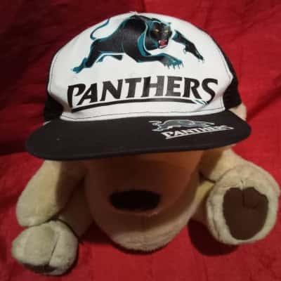 Panthers Cap 3