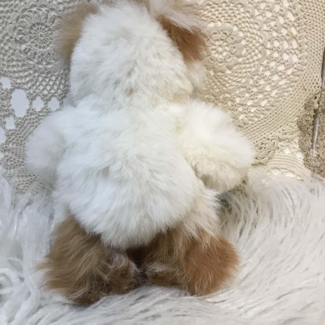 Alpaca Furred Teddy Bear