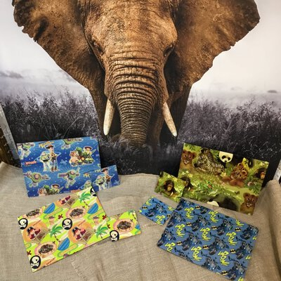 Set Of Four Kids  Placemats And Coasters