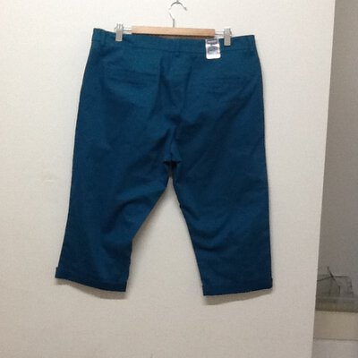 Maine New England turquoise shorts