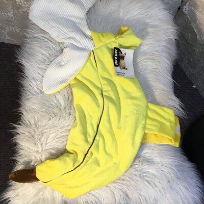 Sure Pet Dog Costume Extra Large Banana